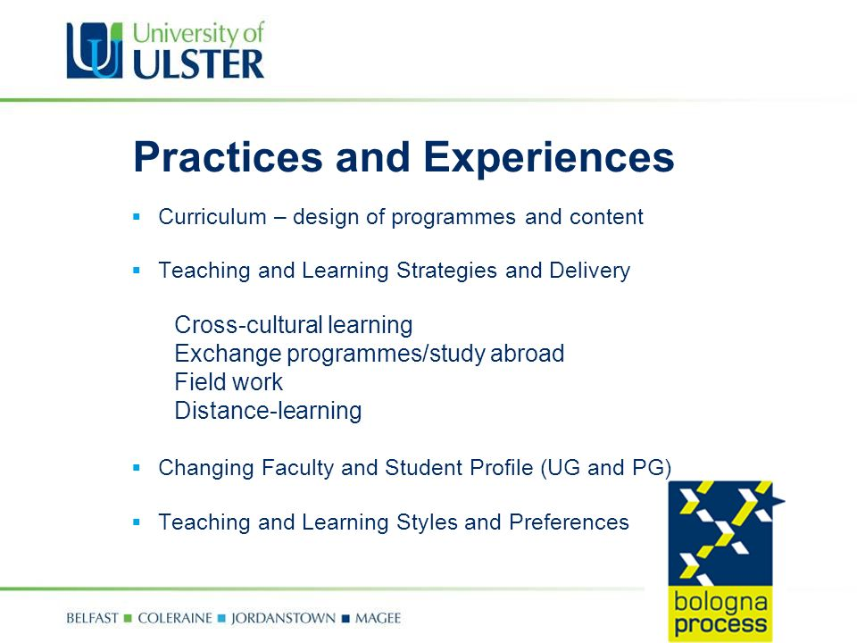 Practices and Experiences Curriculum – design of programmes and content Teaching and Learning Strategies and Delivery Cross-cultural learning Exchange