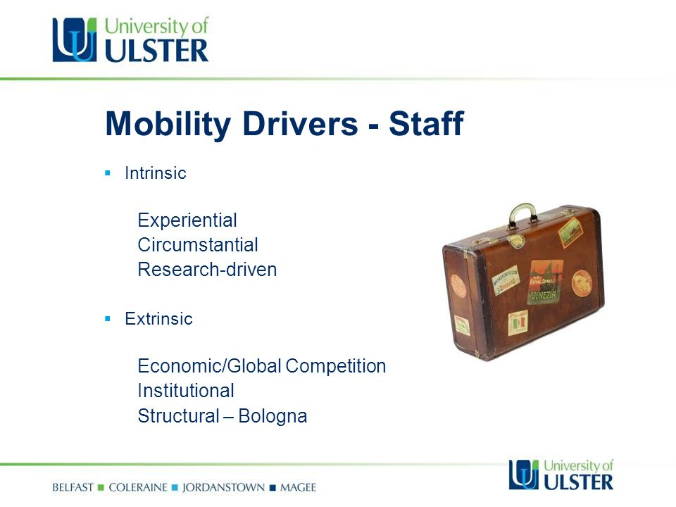 Mobility Drivers - Staff Intrinsic Experiential Circumstantial Research-driven Extrinsic Economic/Global Competition Institutional Structural – Bologna