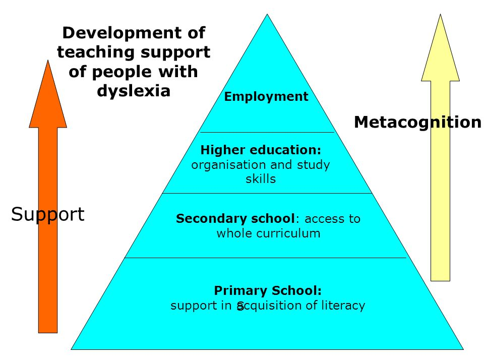 S Primary School: support in acquisition of literacy Development of teaching support of people with dyslexia Secondary school: access to whole curricu