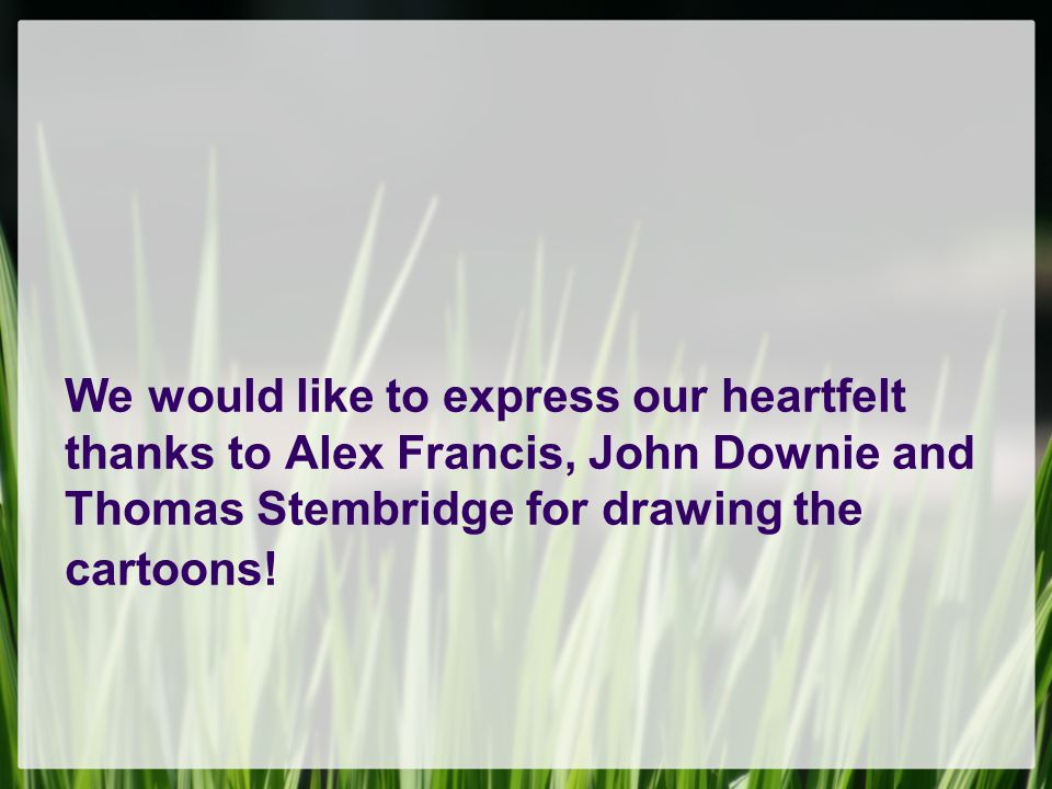 We would like to express our heartfelt thanks to Alex Francis, John Downie and Thomas Stembridge for drawing the cartoons!