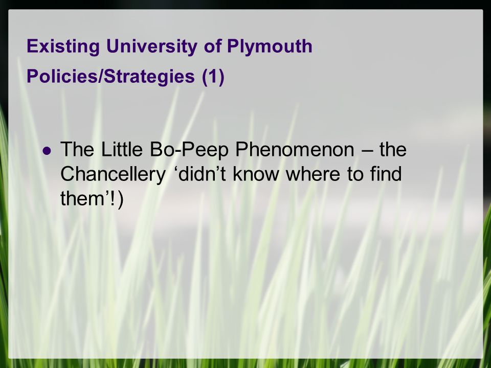 Existing University of Plymouth Policies/Strategies (1) The Little Bo-Peep Phenomenon – the Chancellery didnt know where to find them!)