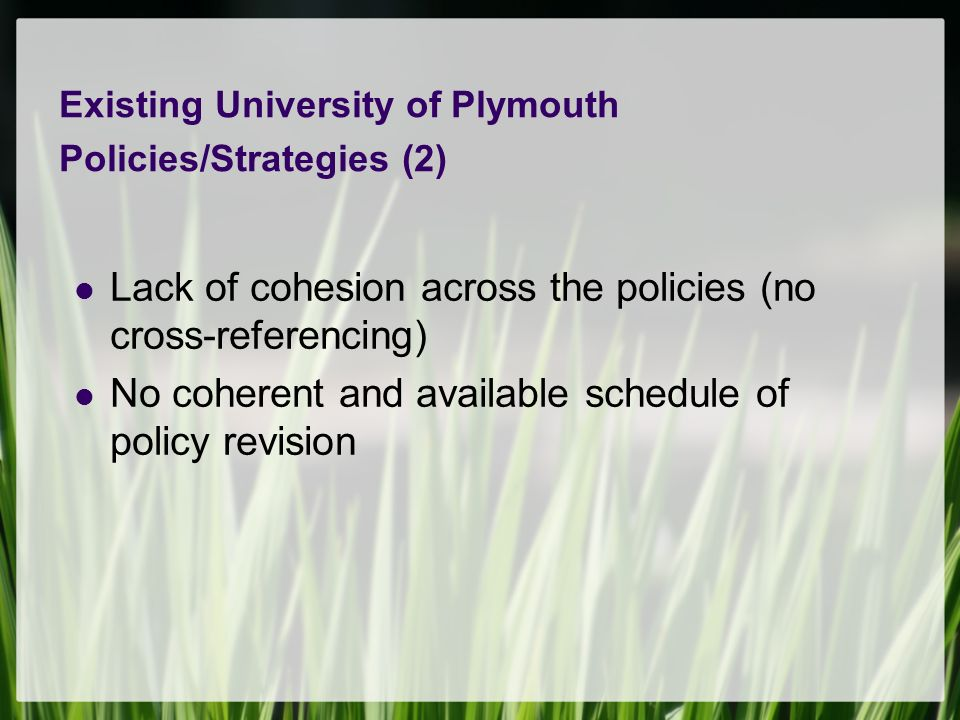 Existing University of Plymouth Policies/Strategies (2) Lack of cohesion across the policies (no cross-referencing) No coherent and available schedule