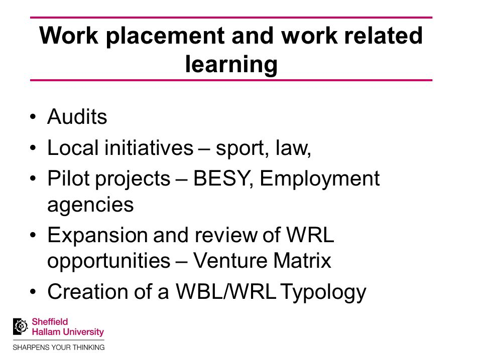 Work placement and work related learning Audits Local initiatives – sport, law, Pilot projects – BESY, Employment agencies Expansion and review of WRL opportunities – Venture Matrix Creation of a WBL/WRL Typology