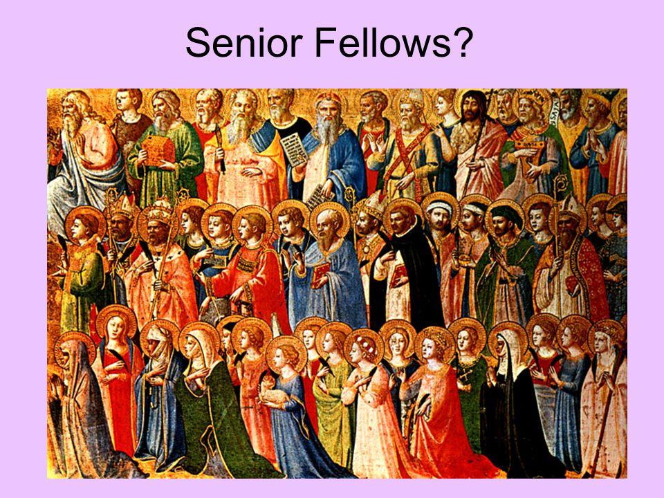 Senior Fellows