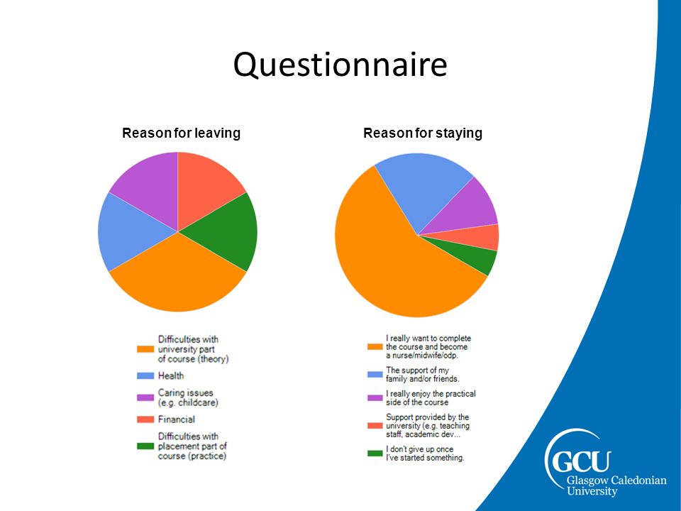 Questionnaire Reason for leavingReason for staying