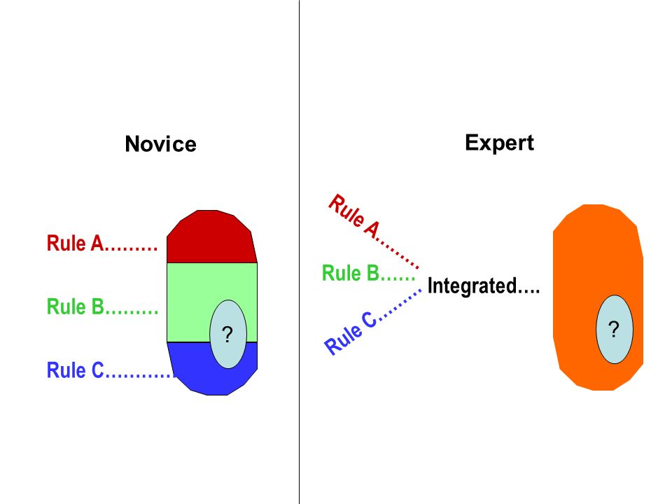 Rule A……… Rule B……… Rule C………… Novice ? Expert Rule A……… Rule B…… Rule C……… Integrated…. ?