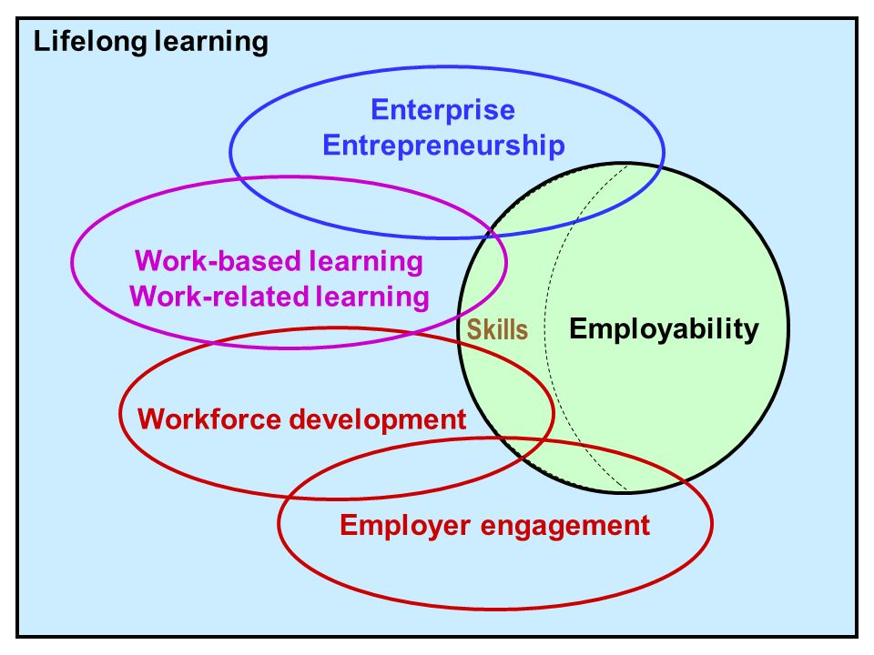 Lifelong learning Employability Workforce development Employer engagement Enterprise Entrepreneurship Work-based learning Work-related learning Skills