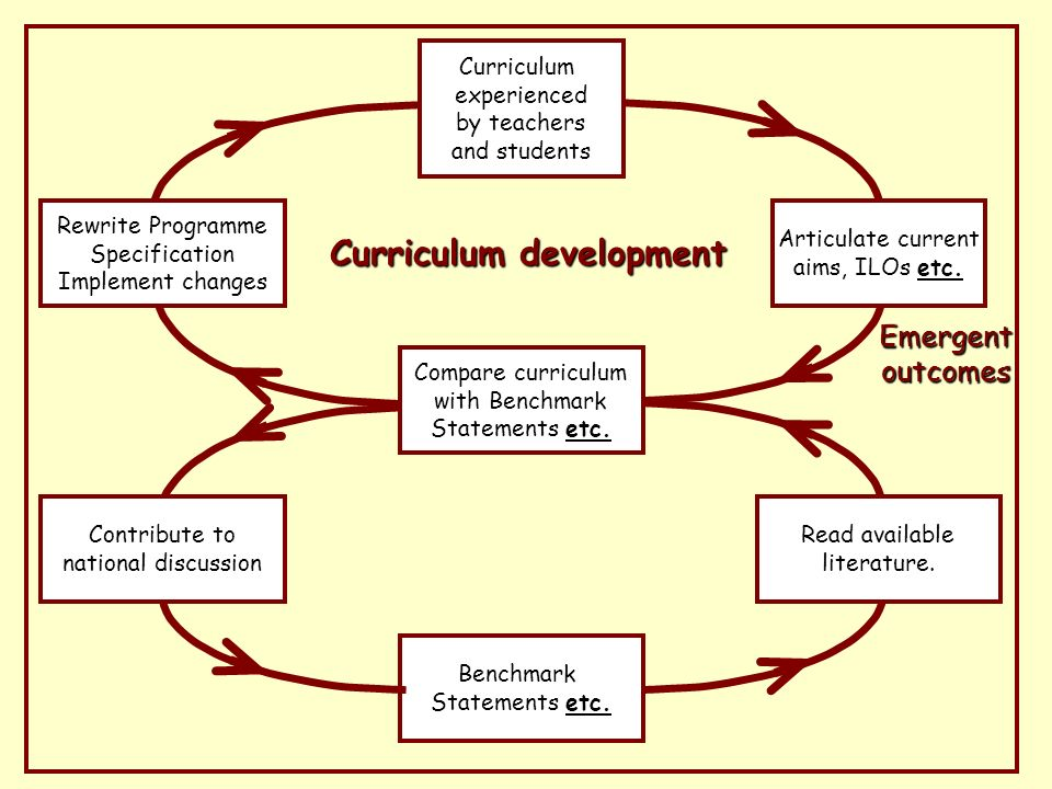 Curriculum development Emergent outcomes Rewrite Programme Specification Implement changes Read available literature.