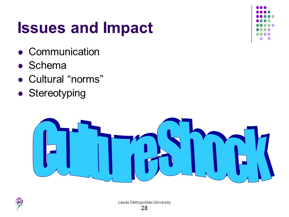 Leeds Metropolitan University 28 Issues and Impact Communication Schema Cultural norms Stereotyping