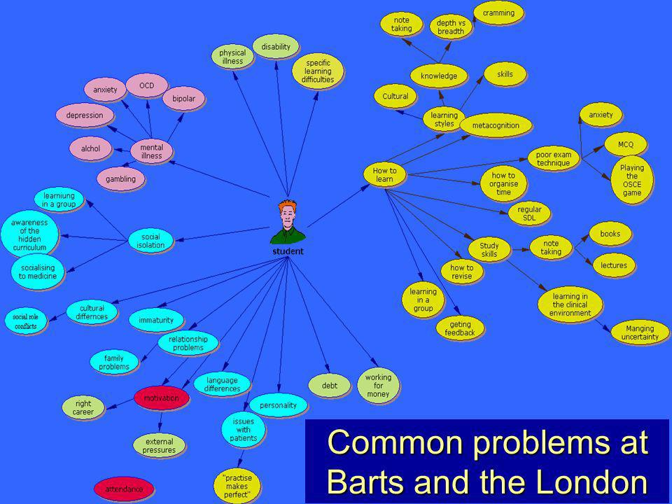 12 The Clinical Communication and Learning Skills Unit Common problems at Barts and the London