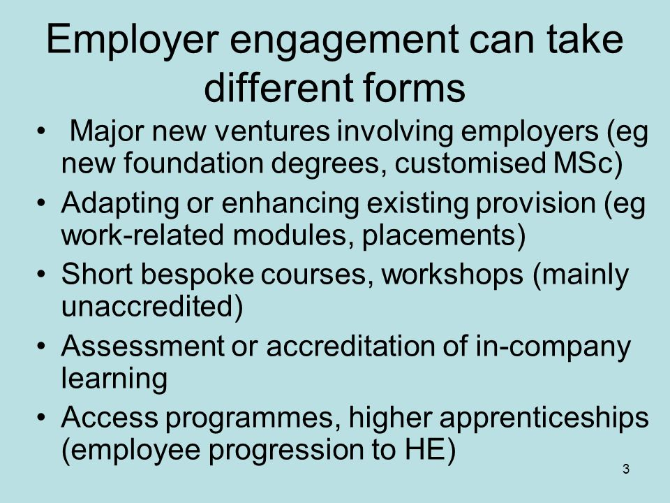 3 Employer engagement can take different forms Major new ventures involving employers (eg new foundation degrees, customised MSc) Adapting or enhancing existing provision (eg work-related modules, placements) Short bespoke courses, workshops (mainly unaccredited) Assessment or accreditation of in-company learning Access programmes, higher apprenticeships (employee progression to HE)
