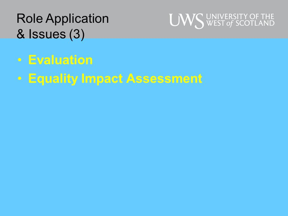 Evaluation Equality Impact Assessment Role Application & Issues (3)