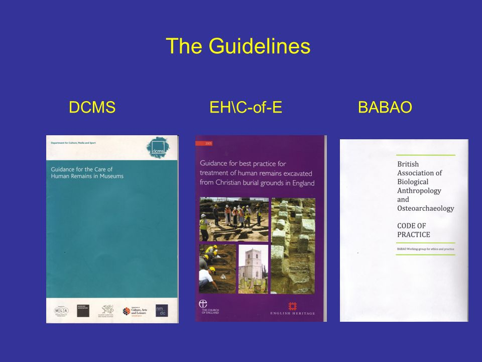 The Guidelines DCMS EH\C-of-E BABAO