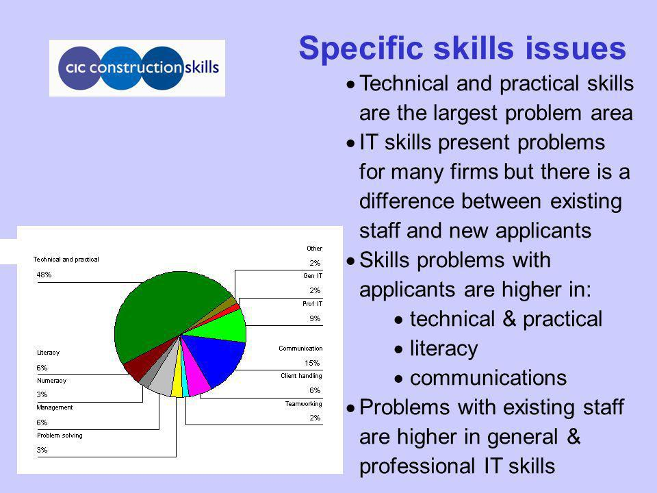 Specific skills issues Technical and practical skills are the largest problem area IT skills present problems for many firms but there is a difference