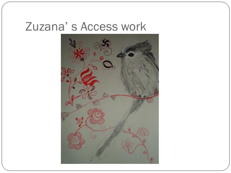 Zuzana s Access work