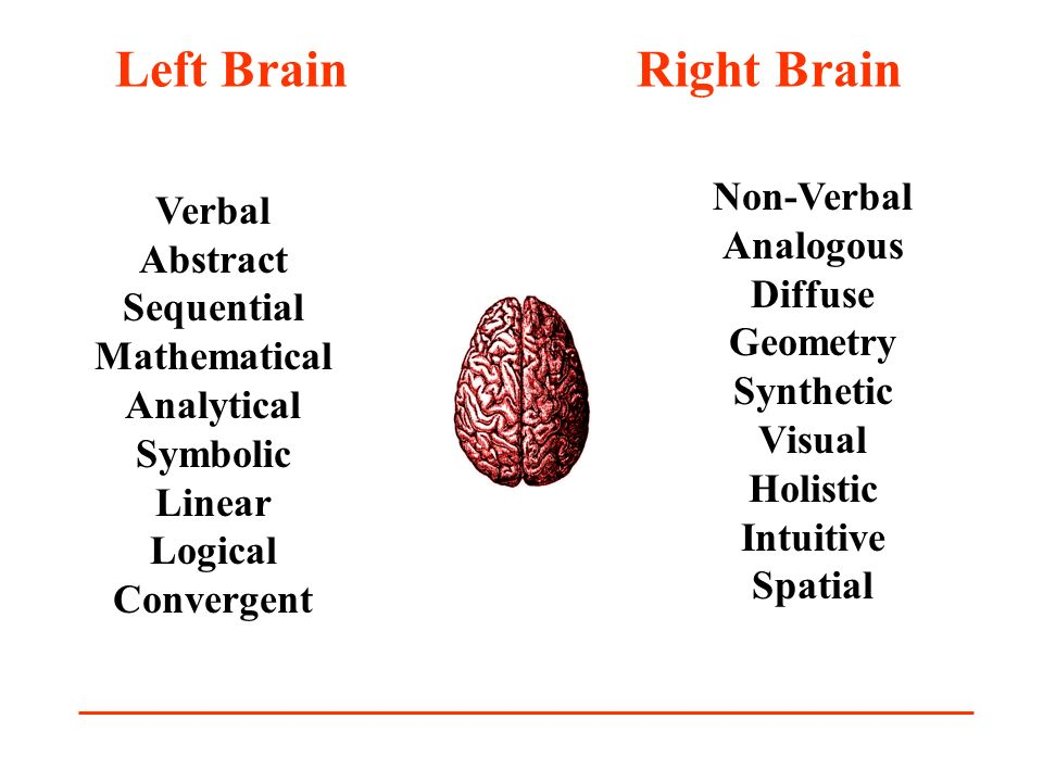 Left Brain Right Brain Verbal Abstract Sequential Mathematical Analytical Symbolic Linear Logical Convergent Non-Verbal Analogous Diffuse Geometry Syn