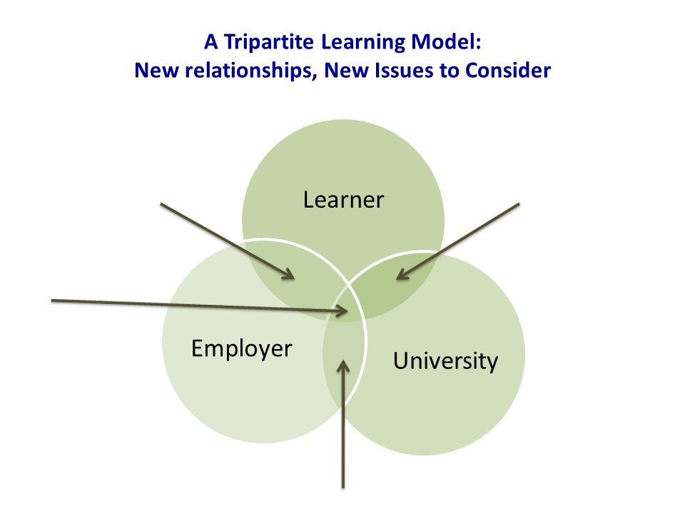 A Tripartite Learning Model: New relationships, New Issues to Consider Learner UniversityEmployer