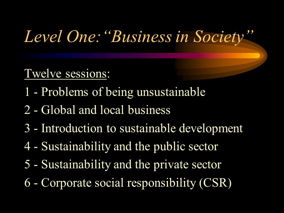Level One:Business in Society Twelve sessions: 1 - Problems of being unsustainable 2 - Global and local business 3 - Introduction to sustainable devel