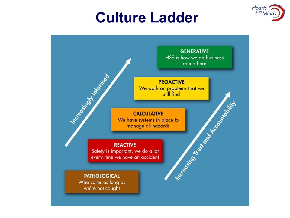 Culture Ladder