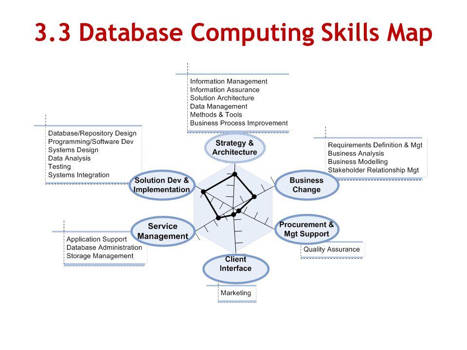 3.3 Database Computing Skills Map
