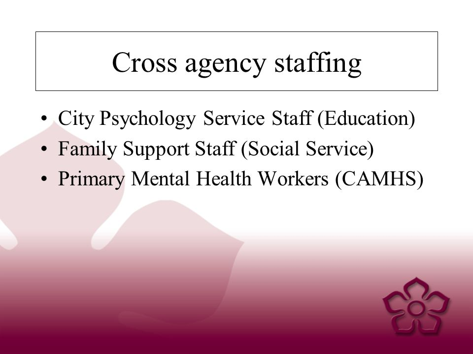 Cross agency staffing City Psychology Service Staff (Education) Family Support Staff (Social Service) Primary Mental Health Workers (CAMHS)