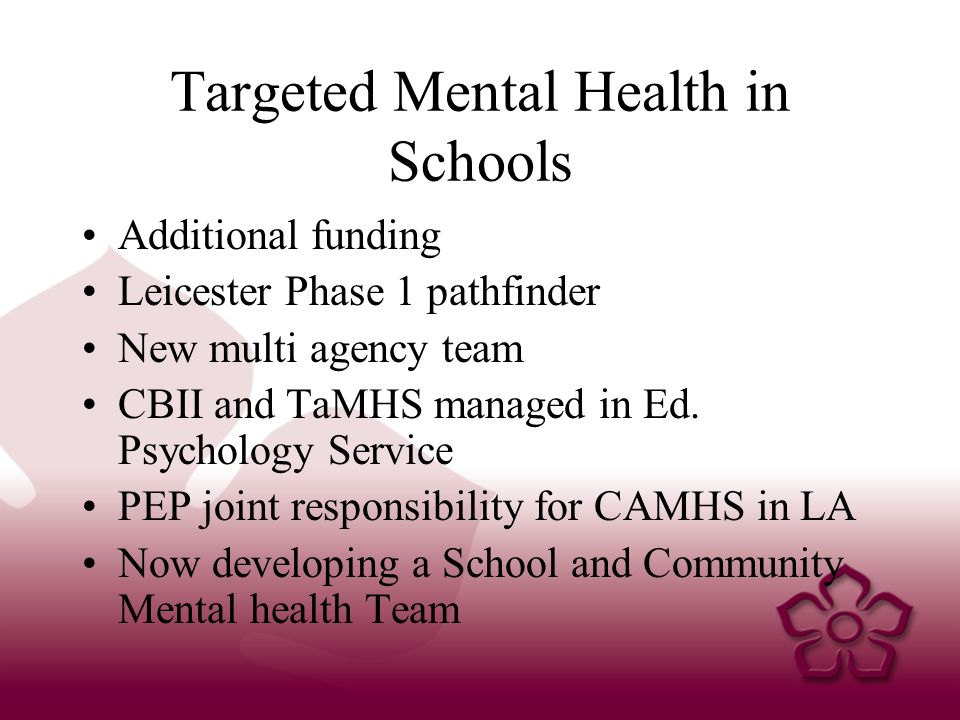 Targeted Mental Health in Schools Additional funding Leicester Phase 1 pathfinder New multi agency team CBII and TaMHS managed in Ed.