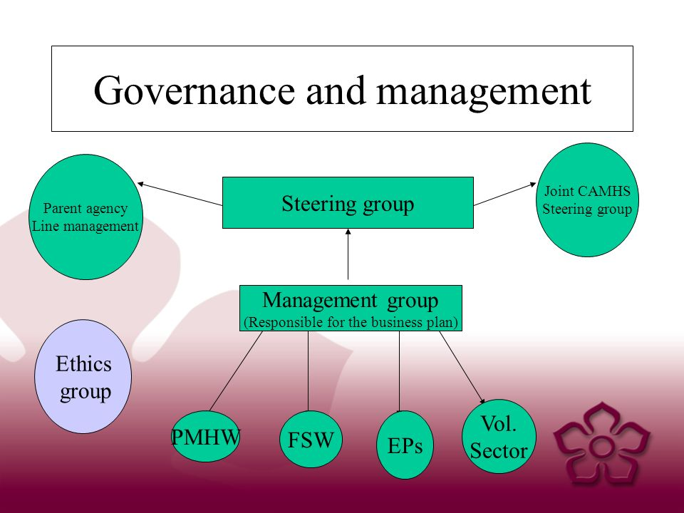 Governance and management Management group (Responsible for the business plan) Steering group Joint CAMHS Steering group Parent agency Line management PMHW FSW EPs Vol.