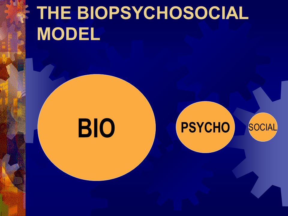 THE BIOPSYCHOSOCIAL MODEL BIO PSYCHO SOCIAL