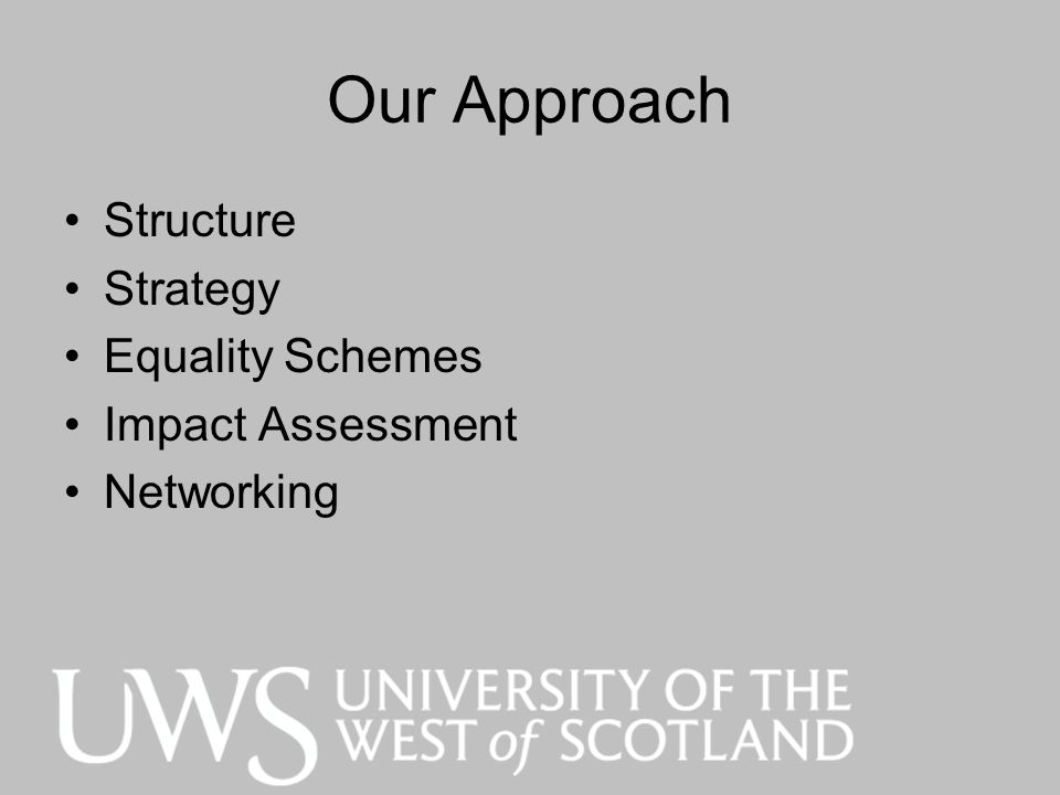 Our Approach Structure Strategy Equality Schemes Impact Assessment Networking