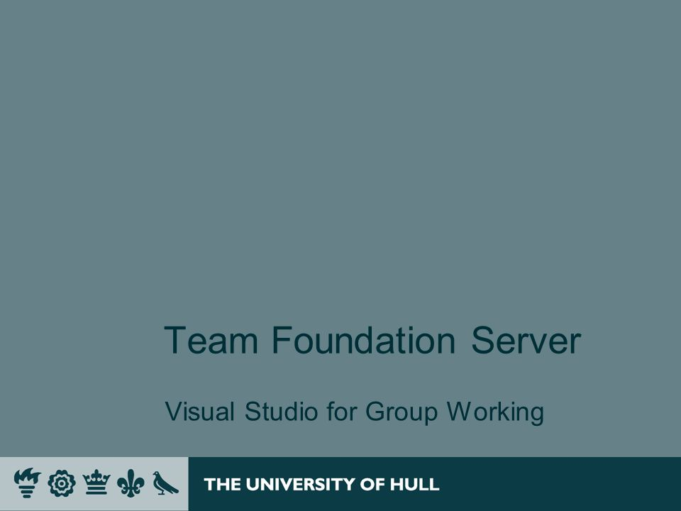 Team Foundation Server Visual Studio for Group Working