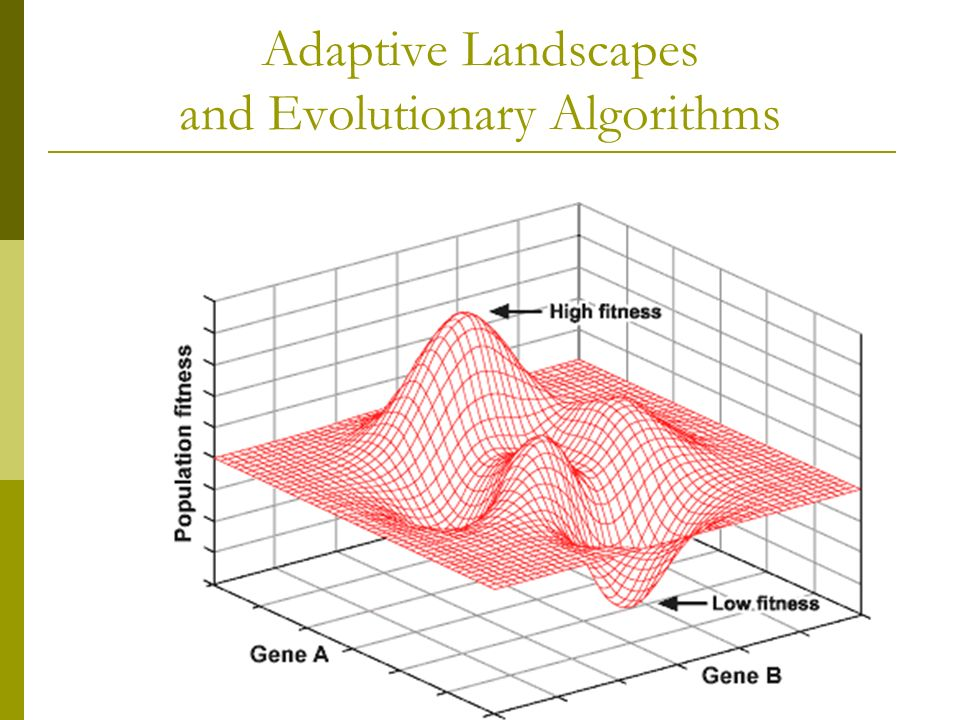 Adaptive Landscapes and Evolutionary Algorithms