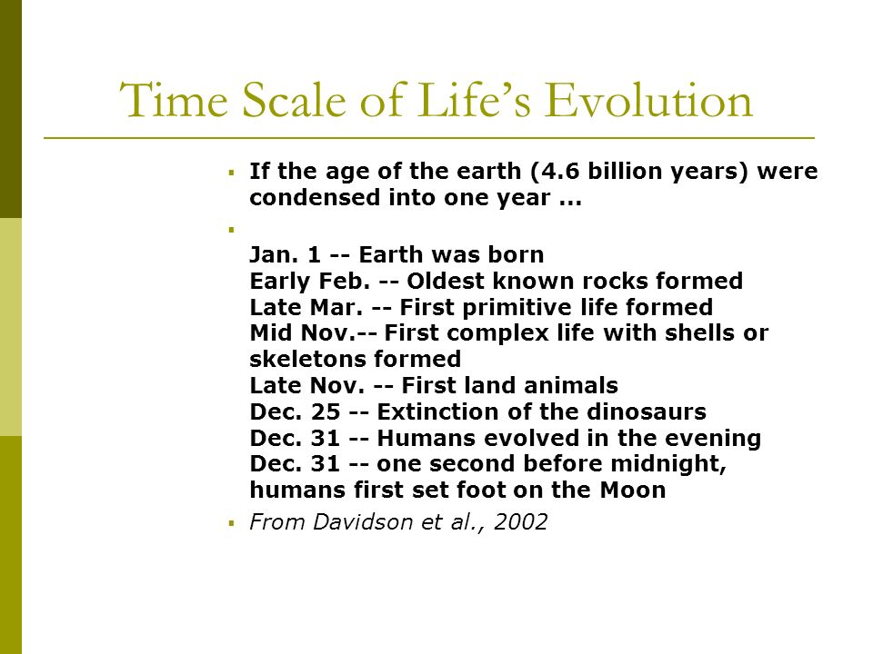 If the age of the earth (4.6 billion years) were condensed into one year...