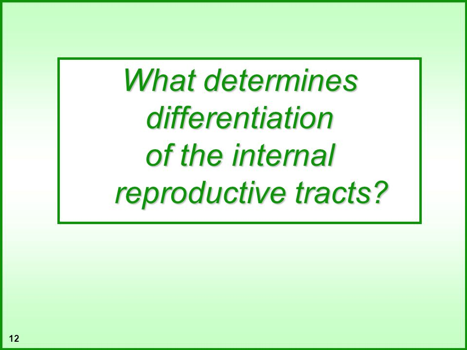 12 What determines differentiation of the internal reproductive tracts?