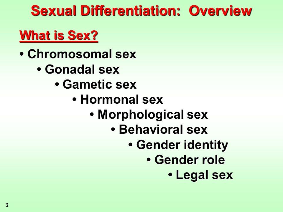 3 Chromosomal sex Chromosomal sex Gonadal sex Gonadal sex Gametic sex Gametic sex Hormonal sex Hormonal sex Morphological sex Morphological sex Behavi