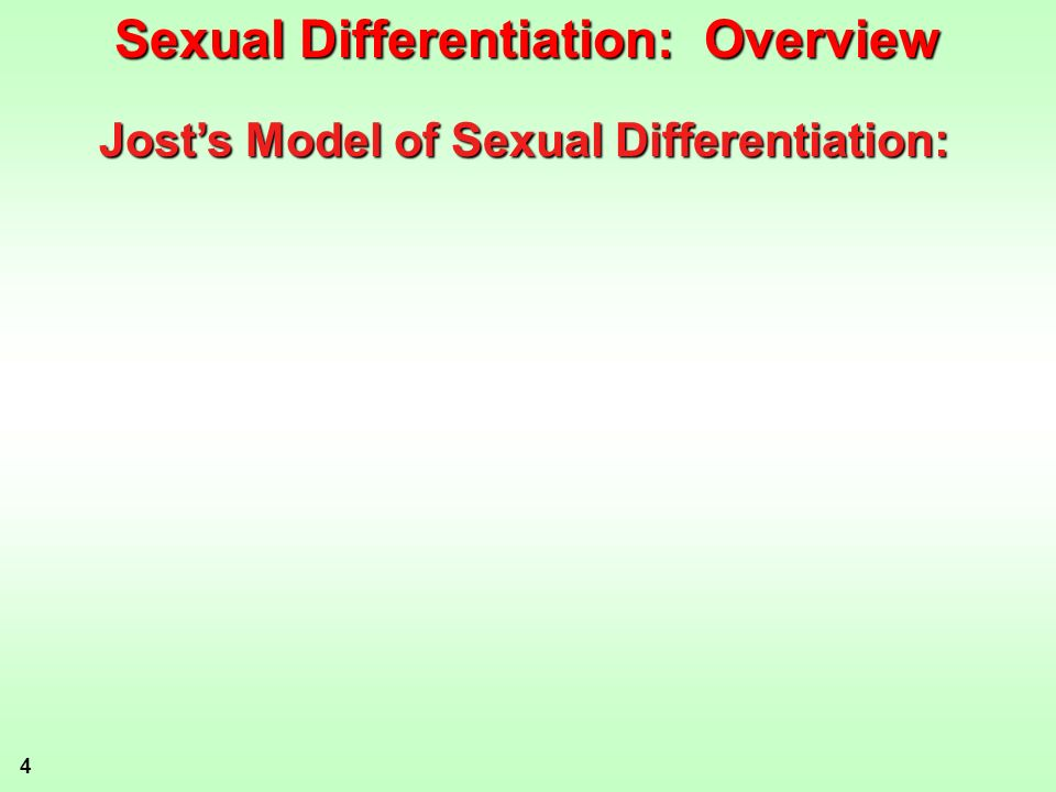 4 Josts Model of Sexual Differentiation: Sexual Differentiation: Overview