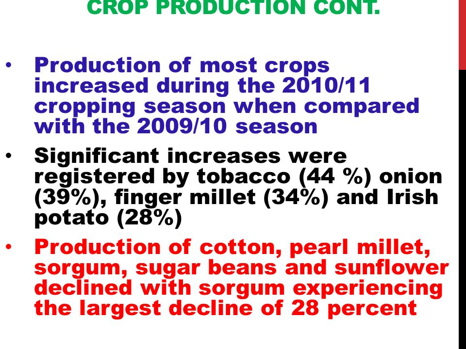 CROP PRODUCTION CONT. Production of most crops increased during the 2010/11 cropping season when compared with the 2009/10 season Significant increase