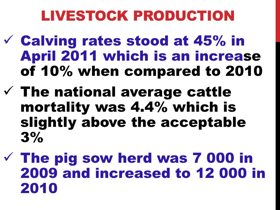 LIVESTOCK PRODUCTION Calving rates stood at 45% in April 2011 which is an increase of 10% when compared to 2010 The national average cattle mortality