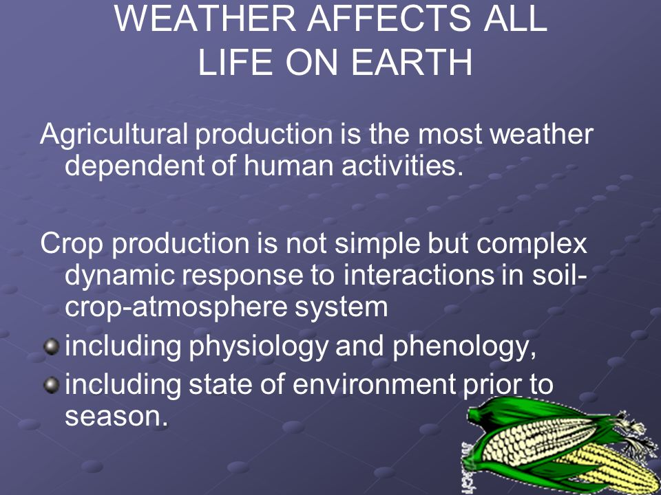 WEATHER AFFECTS ALL LIFE ON EARTH Agricultural production is the most weather dependent of human activities. Crop production is not simple but complex