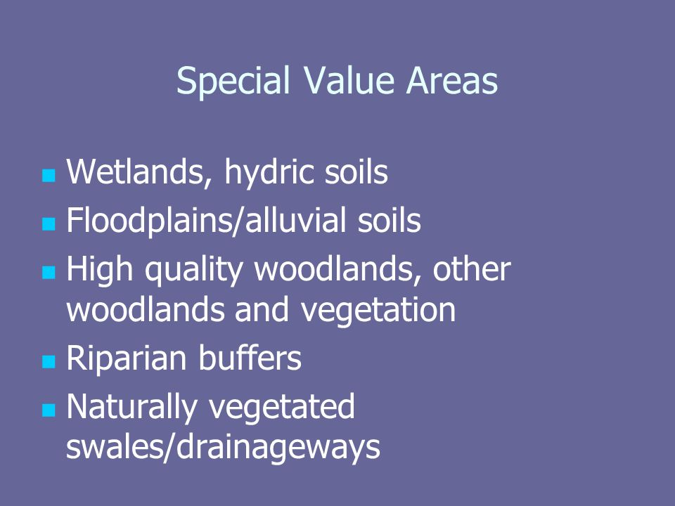 Special Value Areas Wetlands, hydric soils Floodplains/alluvial soils High quality woodlands, other woodlands and vegetation Riparian buffers Naturally vegetated swales/drainageways