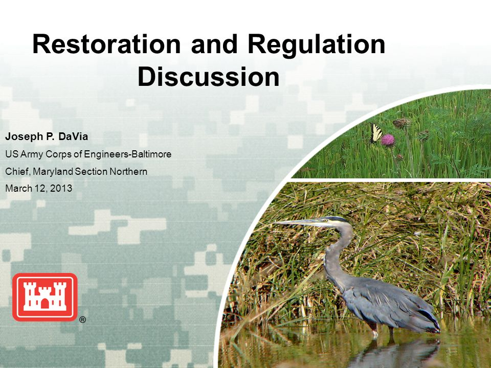 US Army Corps of Engineers BUILDING STRONG ® Restoration and Regulation Discussion Joseph P.