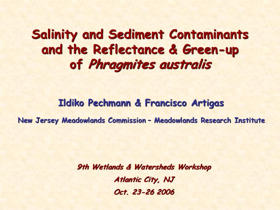 Salinity and Sediment Contaminants and the Reflectance & Green-up of Phragmites australis Ildiko Pechmann & Francisco Artigas New Jersey Meadowlands Commission – Meadowlands Research Institute 9th Wetlands & Watersheds Workshop Atlantic City, NJ Oct.