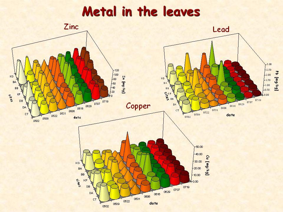 Metal in the leaves