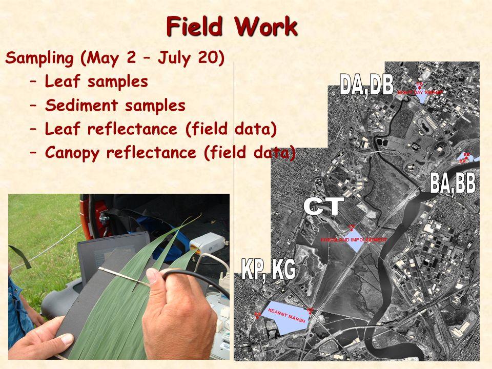 Field Work Sampling (May 2 – July 20) –Leaf samples –Sediment samples –Leaf reflectance (field data) –Canopy reflectance (field data)