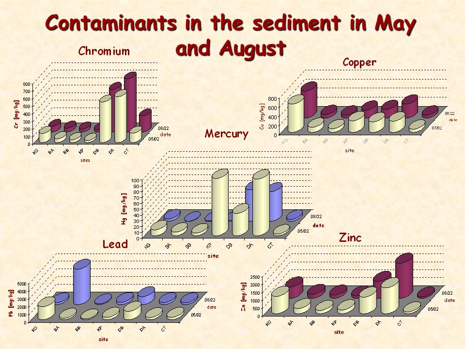 Contaminants in the sediment in May and August