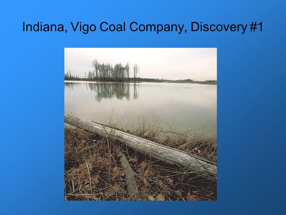 Indiana, Vigo Coal Company, Discovery #1