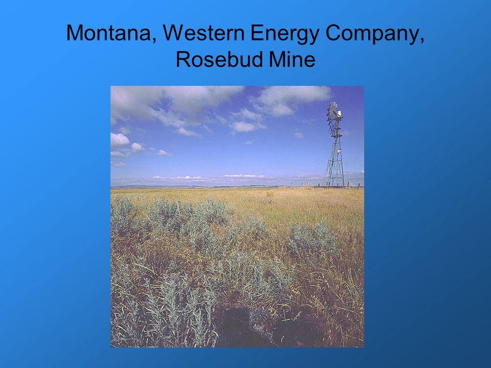 Montana, Western Energy Company, Rosebud Mine