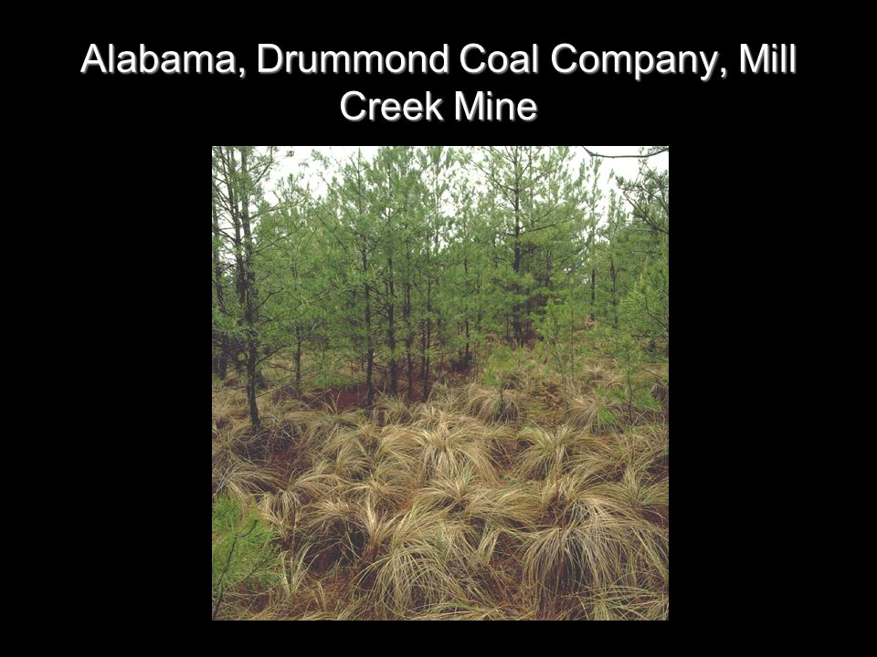 Alabama, Drummond Coal Company, Mill Creek Mine