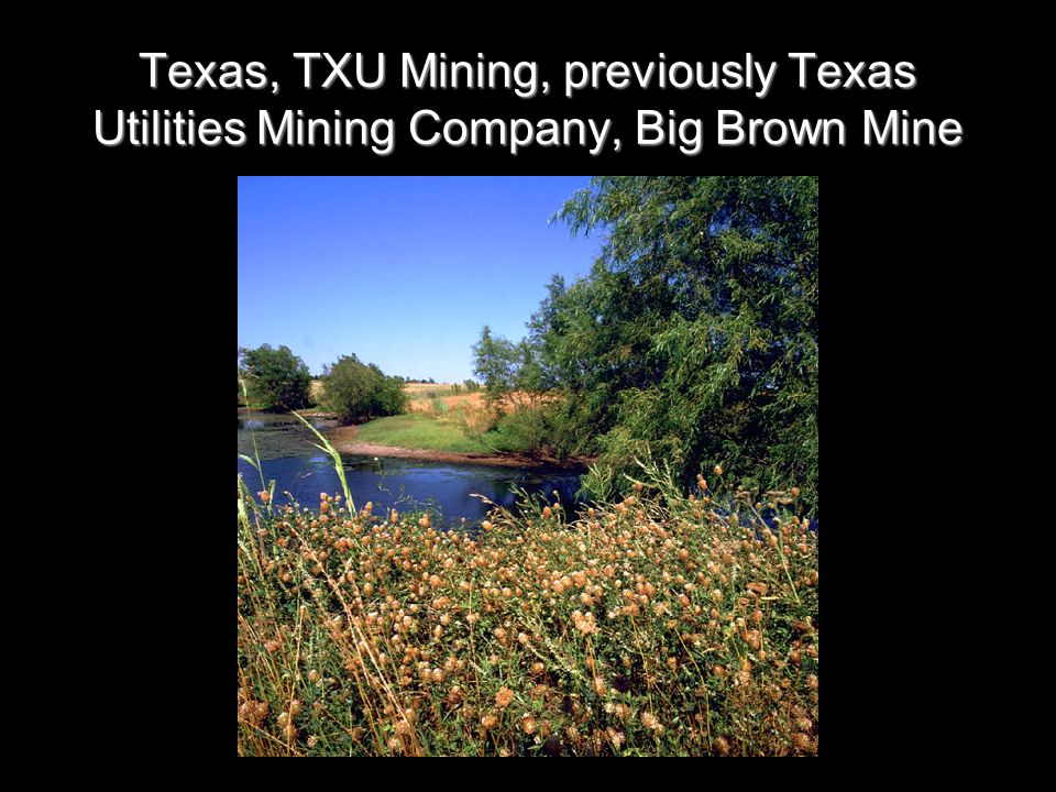 Texas, TXU Mining, previously Texas Utilities Mining Company, Big Brown Mine