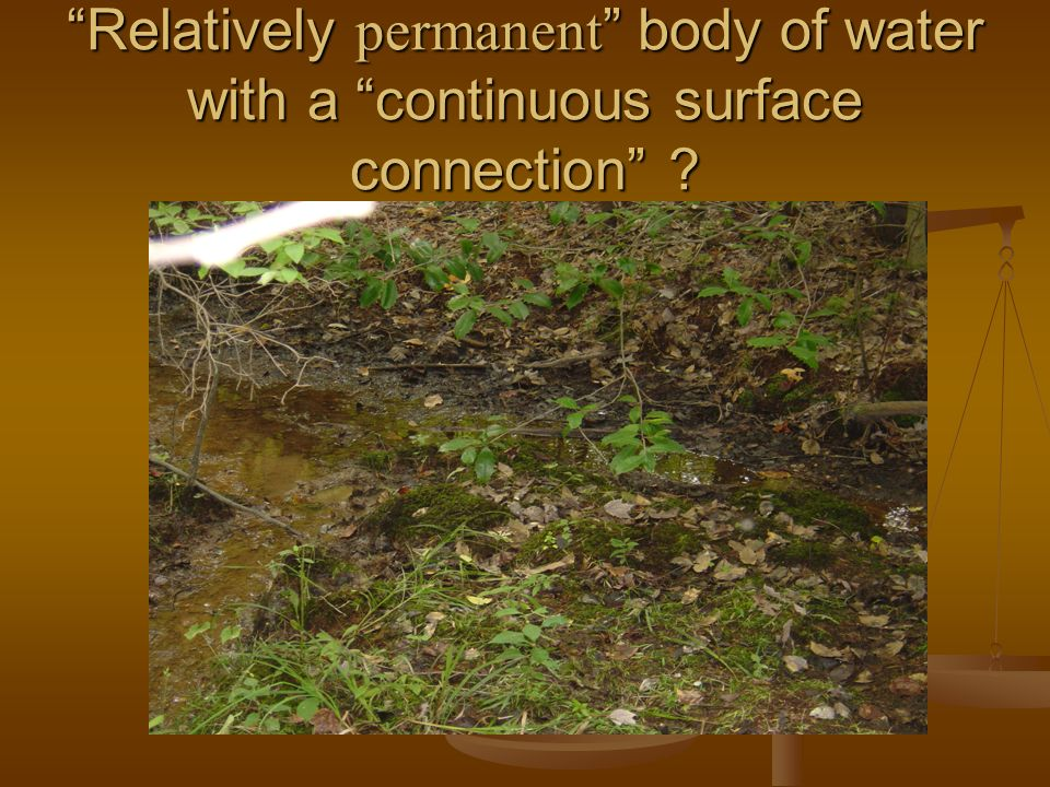 Relatively permanent body of water with a continuous surface connection