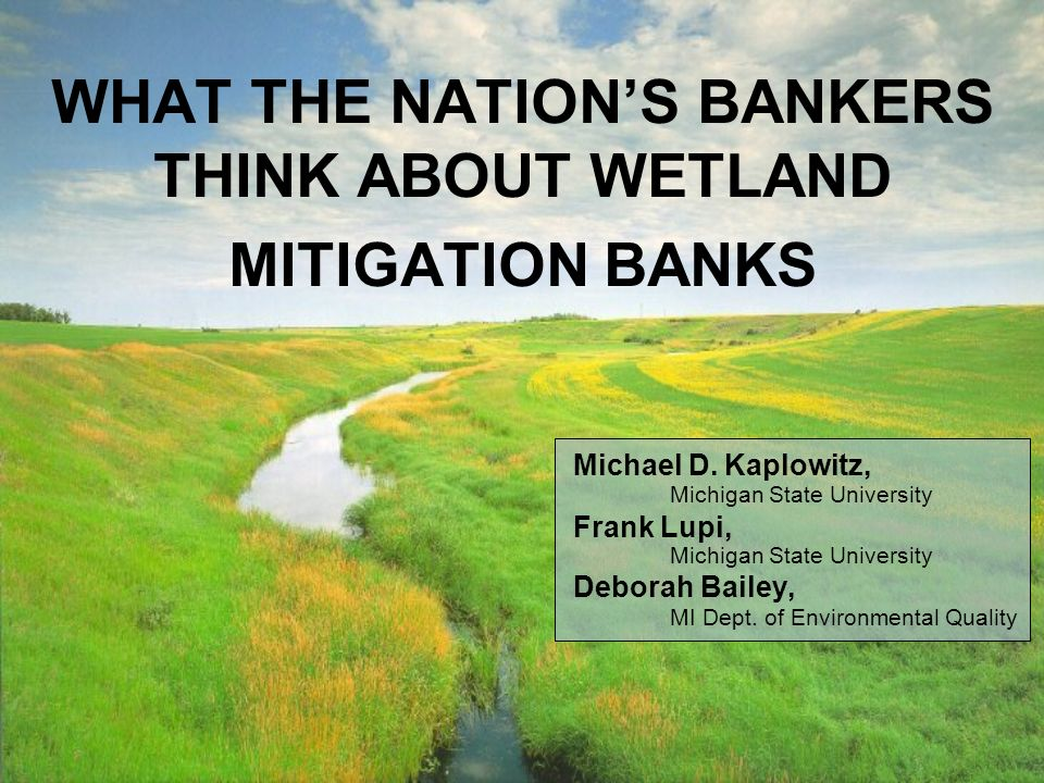 WHAT THE NATIONS BANKERS THINK ABOUT WETLAND MITIGATION BANKS Michael D.